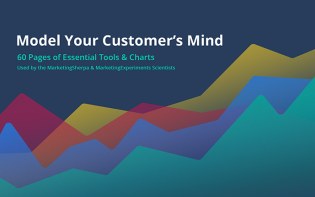 A Model of Your Customer's Mind